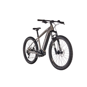 FOCUS Jarifa² 6.7 Plus E-mountainbike grå